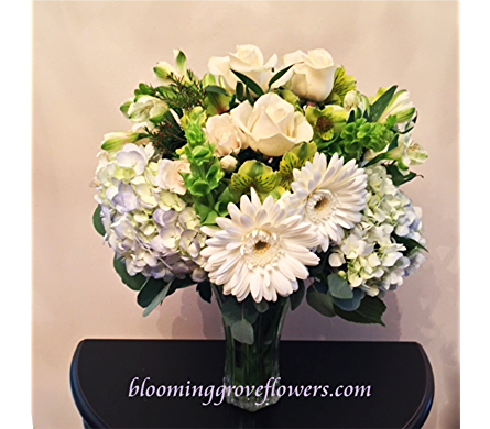 BGF7137 in Buffalo Grove IL, Blooming Grove Flowers & Gifts