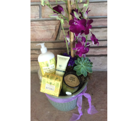 Premium Spa Package in Lafayette CO, Lafayette Florist, Gift shop & Garden Center
