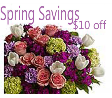 Spring Savings in Campbell CA, Citti's Florists