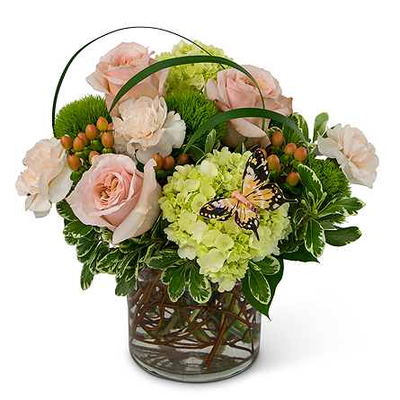 Song of Gratitude in Exton PA, Blossom Boutique Florist