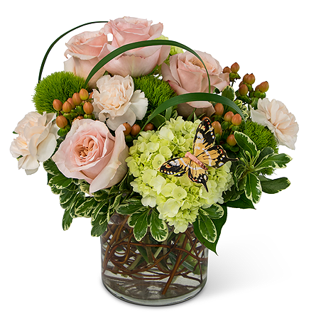 Expressions of Gratitude in Bradenton FL, Florist of Lakewood Ranch