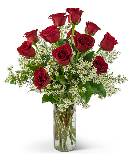 Swoon Over Me Dozen Red Roses in Chatham ON, Pizazz!  Florals & Balloons