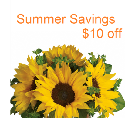Summer Savings in Campbell CA, Citti's Florists