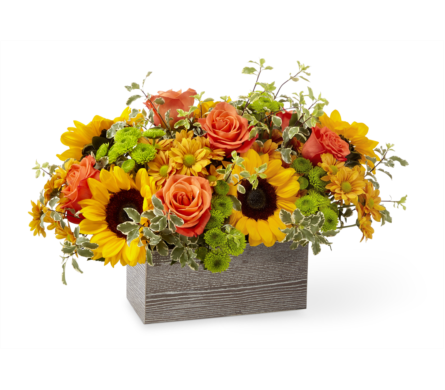 Gathered Garden  in Detroit and St. Clair Shores MI, Conner Park Florist