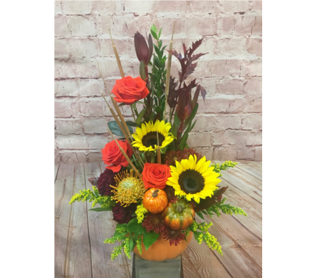 Pumpkin Patch in Wellington FL, Wellington Florist