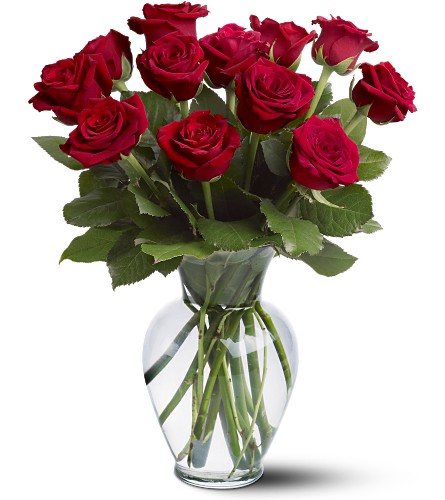 12 Red Roses in Oklahoma City OK, Capitol Hill Florist and Gifts