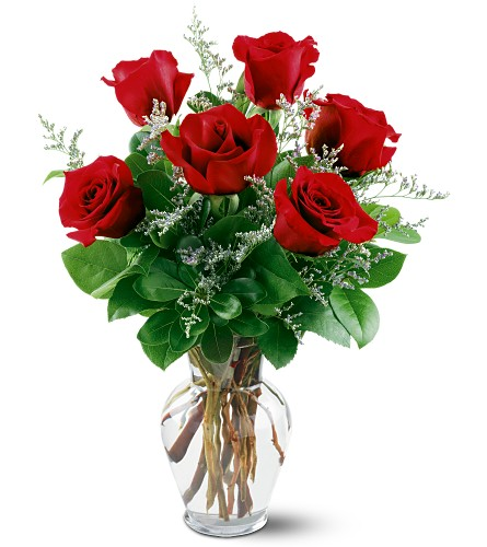 6 Red Roses in Needham MA, Needham Florist