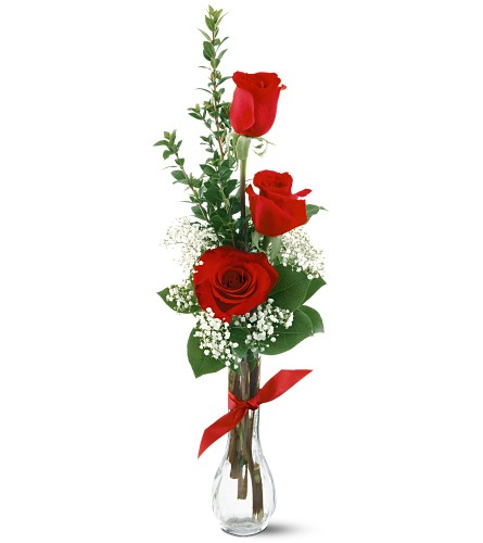 3 Red Roses in Evansville IN, Cottage Florist & Gifts