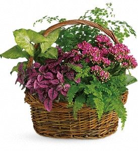 Secret Garden Basket in Vancouver BC, Purple Rainbow Florist