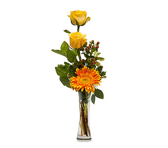 Bring Me Sunshine in East Syracuse NY, Whistlestop Florist Inc