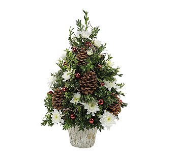 Traditional Boxwood in Avon Lake OH, Sisson's Flowers & Gifts