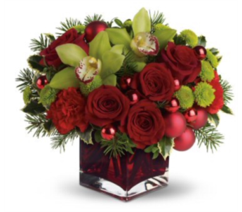 kiss under the mistletoe  in Needham MA, Needham Florist