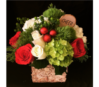 Holiday Cheer in Needham MA, Needham Florist
