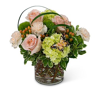 Song of Gratitude in East Syracuse NY, Whistlestop Florist Inc