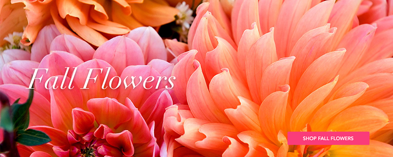 Send Fall Flowers to Fairfax, VA with Greensleeves Florist, your florists
