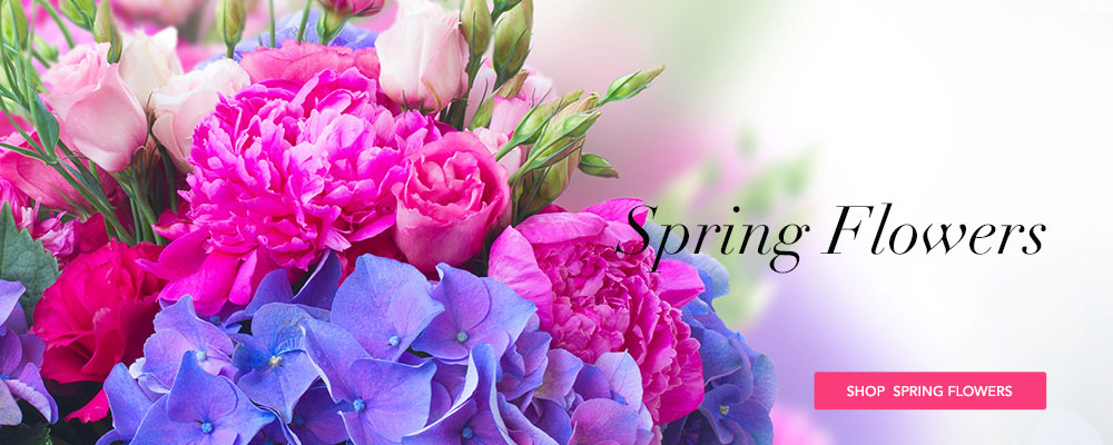 Send Spring Flowers to Fort Dodge, IA with Becker Florists, Inc., your local florists