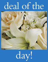 Deal of the Day Flowers