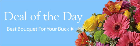 Send Flowers to Lac La Biche, AB with Reminiscence, your local Lac La Biche florist