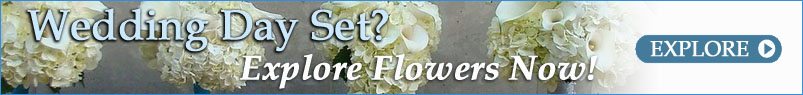 Send Flowers to Calgary, AB with The Flower Jug, your local Calgary florist
