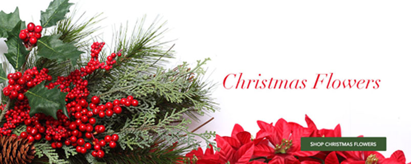 Send Christmas Flowers to Moncton, NB with Macarthur's Flower Shop, your florists