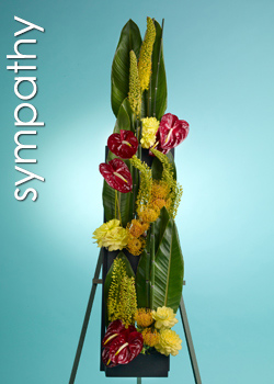 Send Flowers to Santa Monica, CA with Edelweiss Flower Boutique, your local Santa Monica florist