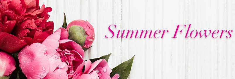 Send Summer Flowers to Farmington, CT with Haworth's Flowers & Gifts, LLC., your florists