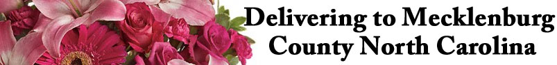 Send flowers to Charlotte, NC with Wilmont Baskets & Blossoms, your local Charlotte florist