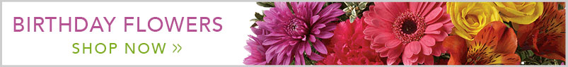 Send flowers to Sapulpa, OK with Neal & Jean's Flowers & Gifts, Inc., your local Sapulpa florist