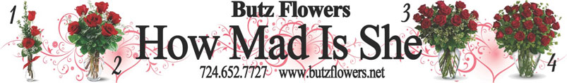 Send Flowers to New Castle, PA with Butz Flowers & Gifts, your local New Castle florist