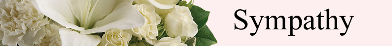 Send flowers to Schofield, WI with Krueger Floral and Gifts, your local Schofield florist