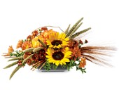 Harvest time in bozeman mt langohr 39 s flowerland for Flower delivery bozeman mt