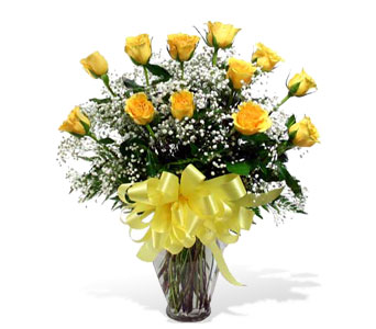 Classic One Dozen Yellow Roses in McLean VA, MyFlorist
