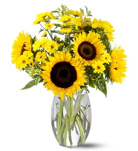 Teleflora's Sunflower Splash in Innisfil ON, Lavender Floral