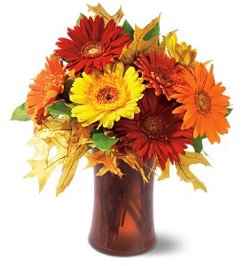Autumn Gerberas in Santa Monica CA, Edelweiss Flower Boutique