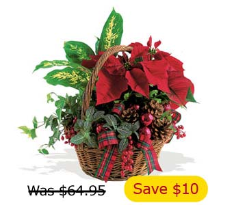 Holiday Planter Basket, flowershopping.com