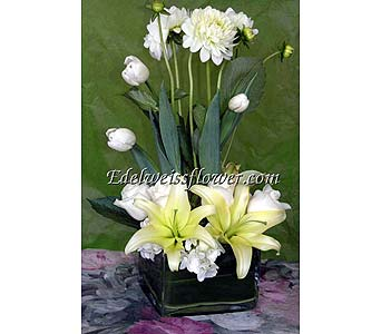 Pure Love Tulips & Roses Flower Bouquet in Santa Monica CA, Edelweiss Flower Boutique