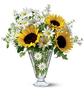 Teleflora's Delicate Daisy Bouquet in Butte MT, Wilhelm Flower Shoppe