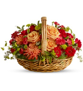 Spanish Garden Basket in Santa Monica CA, Edelweiss Flower Boutique