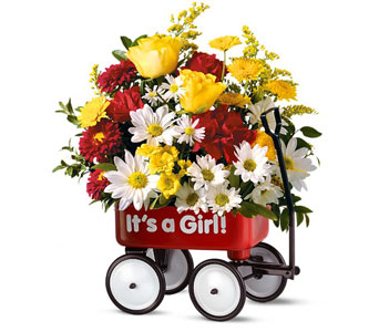 Baby's First Wagon - It's a Girl in McLean VA, MyFlorist