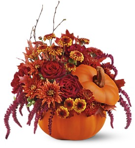 Teleflora's Bewitching Pumpkin Bouquet in Jonesboro AR, Posey Peddler