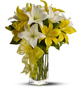 Teleflora's Pick-a-Lily in Las Vegas NV, A French Bouquet