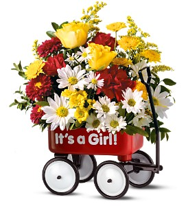 Baby's First Wagon - Girl in Santa Monica CA, Edelweiss Flower Boutique