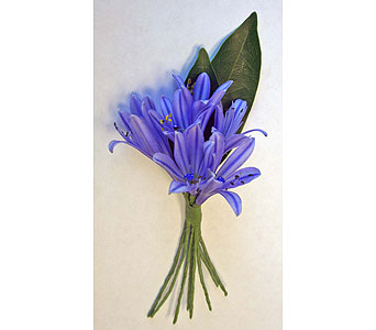 Violet Blue Boutonniere in Indianapolis IN, McNamara Florist