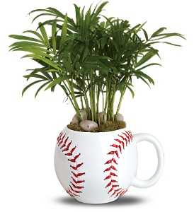 Teleflora's Base Hit Planter in Chattanooga TN, Chattanooga Florist 877-698-3303