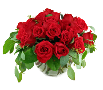 Exquisite Roses in Indianapolis IN, McNamara Florist