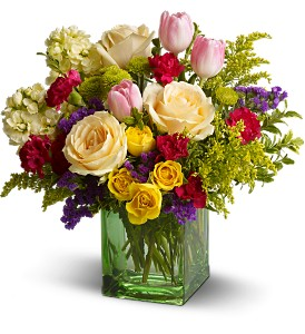 Teleflora's Springtime Harmony in Calgary AB, All Flowers and Gifts
