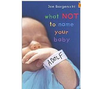 What Not to Name Your Baby Paperback Book in Birmingham AL, Norton's Florist