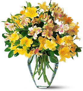 Sparkling Alstroemeria in Las Vegas NV, A French Bouquet