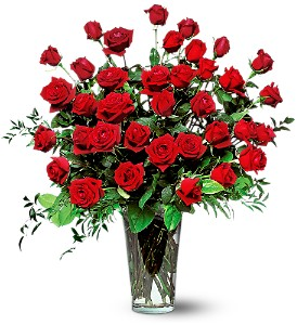 Three Dozen Red Roses in Shawano WI, Ollie's Flowers Inc.