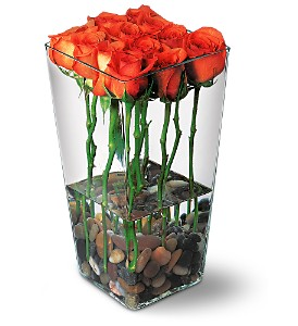 Orange Roses with River Rocks in Shawano WI, Ollie's Flowers Inc.